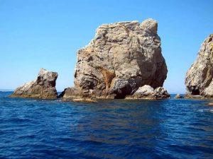 """Roca en medio del mar """"El Gat"""""""